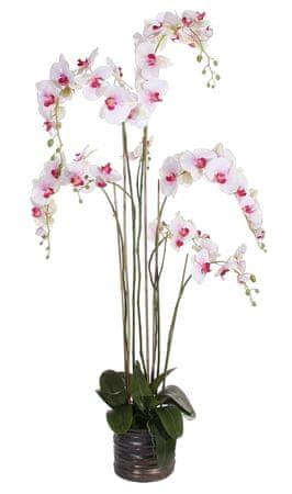 Shishi Lilafehér orchidea virágcseréppel 155 x 75 cm