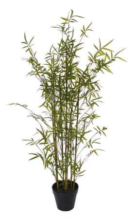 Shishi Bambus v embalaži z rožami 145 cm