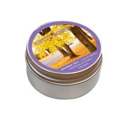 Stylies Aroma gel Stylies cedr/santalové dřevo