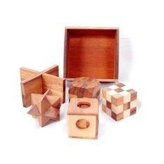 Dilemma 5 lesenih sestavljank v zapleteni škatli