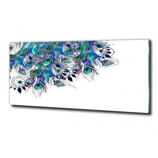 WALLMURALIA Foto obraz fotografie na skle Paví pírka 125x50 cm