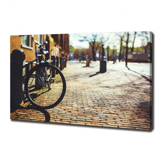 Foto-obraz canvas do obýváku Kolo Amsterdam