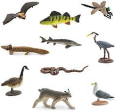 Safari Ltd. Tuba životinje - Velika jezera