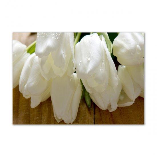 WALLMURALIA Fotoobraz na skle Bílé tulipány 100x70 cm