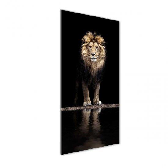 Moderní akrylový fotoobraz Portrét lva