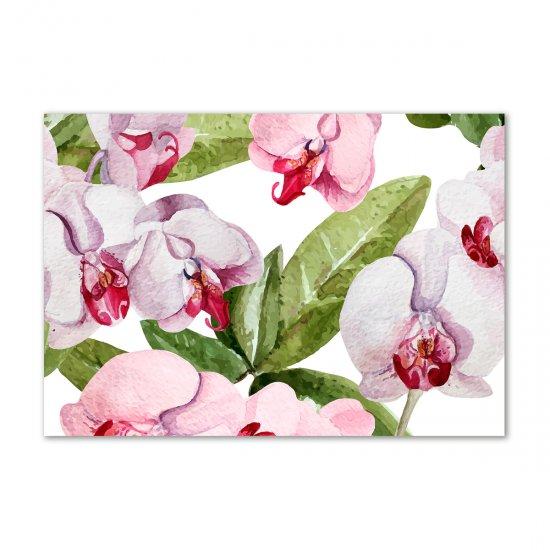 WALLMURALIA Foto obraz akrylové sklo Růžové orchideje 100x70 cm