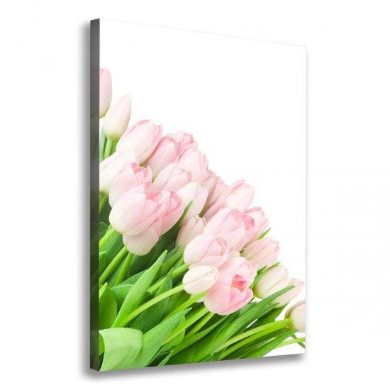 WALLMURALIA Foto obraz na plátně Růžové tulipány 70x100 cm