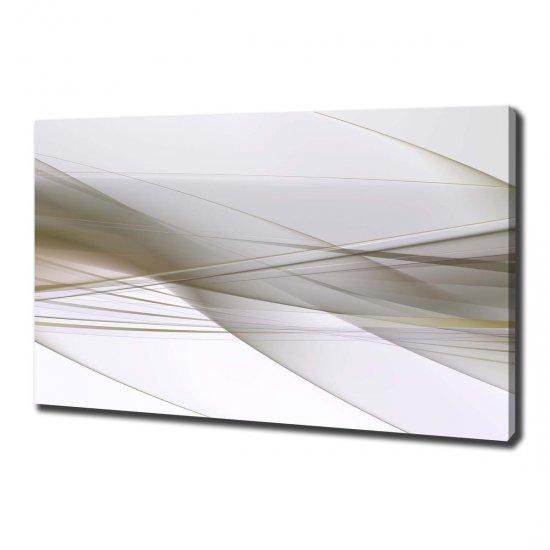 WALLMURALIA Foto obraz na plátně Abstrakce 100x70 cm