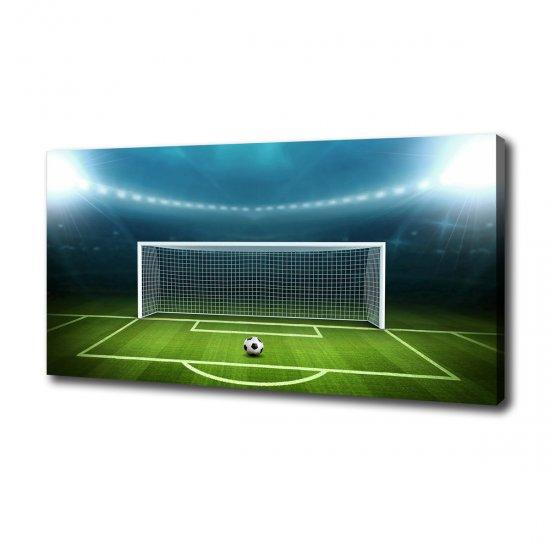 WALLMURALIA Moderní obraz canvas na rámu Stadion 100x50 cm