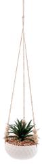 Sifcon Závesný dekoratívny sukulent A, 55 cm