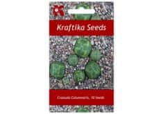 Kraftika 10 semen sukulentů Crassula Columnaris