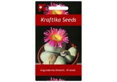 """Kraftika 10 semen sukulentů Argyroderma Delaetii, """"živé kamínky"""""""