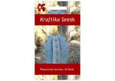 Kraftika 10 semen sukulentů Pilosocereus Azureus Blue Torch