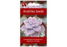 Kraftika 10 semen sukulentů Graptopetalum Pentandrum V Superbum