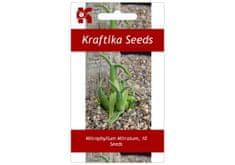Kraftika 10 semen sukulentů Mitrophyllum Mitratum, hadí sukulent