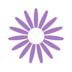 Naplotík Kopretina na plot - fialová s bílým středem s tváří