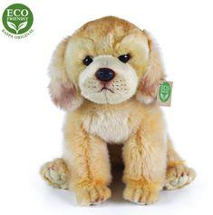 Rappa plišasti labrador, sedeči, 27 cm Eco Friendly