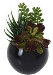 Koopman Dekoratívna rastlina v keramickom kvetináči, dekor 12