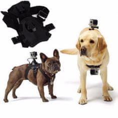 GoSport Nosilni pas za psa GoFetch