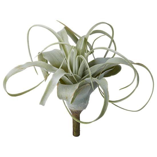 Lene Bjerre Dekoratívna rastlina aloe FLORA, zelená