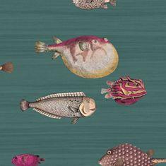 Cole & Son Tapeta Acquario 12024, kolekcia FORNASETTI