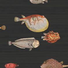 Cole & Son Tapeta Acquario 10048, kolekcia FORNASETTI SENZA TEMPO