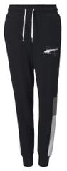 Puma Alpha Sweatpants FL cl B hlače za dječake