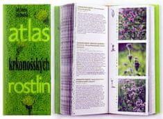 Jan Štursa: Atlas krkonošských rostlin