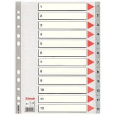 Esselte pregradni karton 1-12 A4 PP, siv (10)