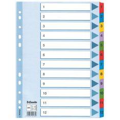 Esselte pregradni karton 1-12 A4, pisan