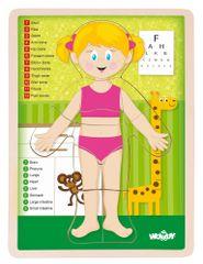 Woody Puzzle Ľudské telo Dievča EN