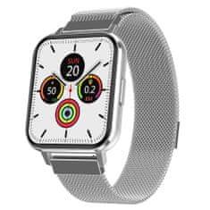 NEOGO DayFit DX, smart hodinky, strieborné/kovové