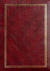 FANDY Fotoalbum 9x13 200 foto Vinyl 1