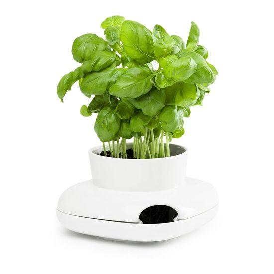 Sagaform Květináč na bylinky Herb, malý