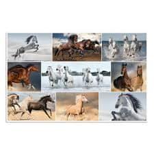 Herma podloga Konji, namizna, 55 x 35 cm