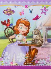 Disney Album samoprzylepny 22,5x28 cm 40 stron dziecięcy Disney 01