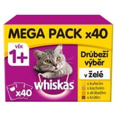 Whiskas Saszetki dla dorosłych kotów, drób w galarecie 40 x 100 g