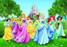 AG design fototapeta Disney princeze, 360 x 254 cm, 4 komada