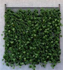 AG design fototapeta Zelenilo na betonu, 180 x 202 cm