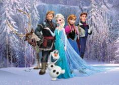 AG design Fototapeta Hrdinové Frozen v lese 160 x 110 cm