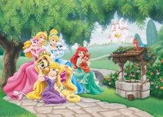 AG design Fototapeta Księżniczki Disneya ze swoimi zwierzakami 160 x 110 cm