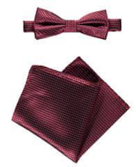 Lerros férfi burgundi csokornyakkendő zsebkendővel 50O9905