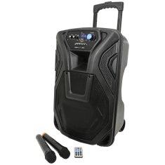 """QTX BUSKER-12, mobilní 12"""" zvukový systém MP3/FM/BT/VHF, 80W"""