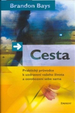 Brandon Bays - Cesta