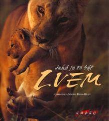 Jaké je to být lvem