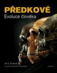 Předkové Evoluce člověka