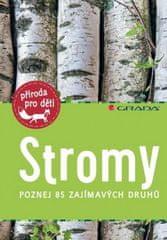 Holger Haag - Stromy