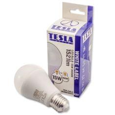 TESLA BL271530-2 LED žarulja