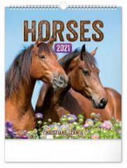 Kalendář 2021 nástěnný: Koně, 30 × 34 cm