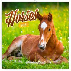 Kalendář 2021 poznámkový: Koně – Christiane Slawik, 30 × 30 cm